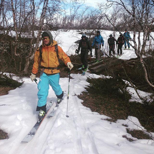 Några turer till krämar vi ur säsongen 15/16! #abisko #riksgränsen #bergsresor #elevenate #dynastar