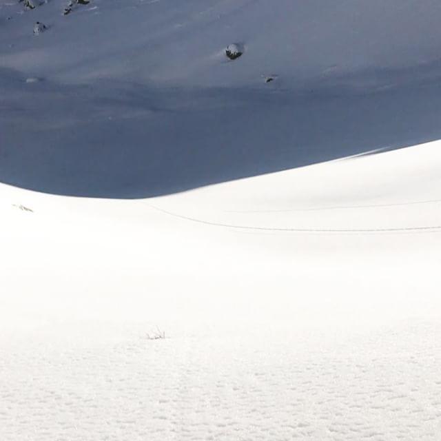 Fin rundtur i Bannalp med fortsatt fina förhållanden!#engelberg #skitouring #bergsresor #elevenate #g3 #dynafit
