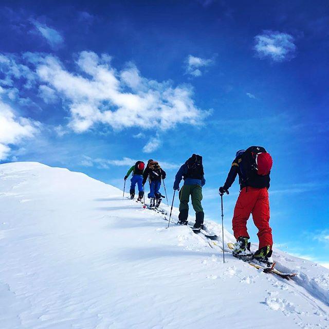 Vi kör vidare med sol, stighudar och puder! #skitouring #piedmont #bergsresor #elevenate #g3skis #dynafit