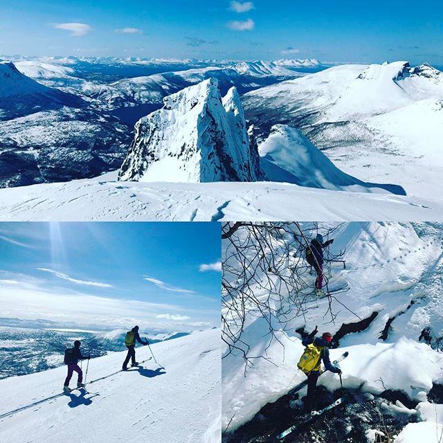 Ny dag och ny topp, idag blev det Revtind. Enligt guideboken var det djungeltät skog i starten och så var det!#revtind #narvik #skitouring #g3gear #elevenate #bergsresor