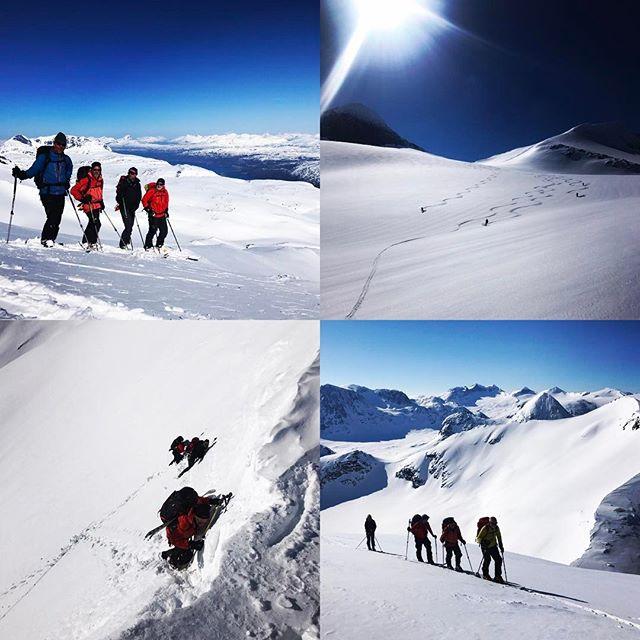 Fin vecka med sol, stighudar och bra snö. Haute route i norr är fantastiskt bra, varken folk i hyttorna eller på fjället!!#narvik #skitouring #bergsresor #elevenate #g3gear #dynafitsweden