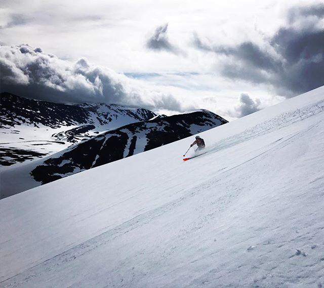 Den här försommaren är oslagbar!#bergsresor #arcticguides