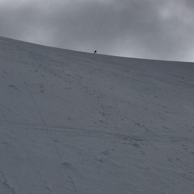 Dom här svängarna fick avsluta skidjobb säsongen 16/17! #bergsresor #arcticguides #elevenate #g3gear #dynafitsweden