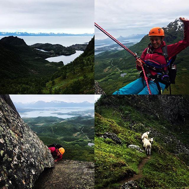 Nord Norge är nog värdens bästa arbetsplats!#hamarøyskaftet #narvik #bergsresor #nordlandturselskap #elevenate #dynafitsweden