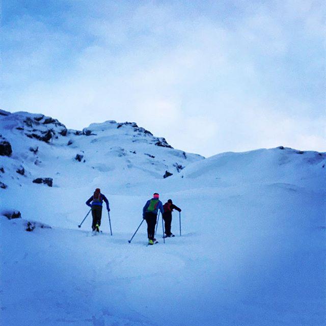 Narvik Tannepirker Maffia fick fortsätta mot toppen när jag vända neråt med ett stelt knä som hänger i sedan förra veckans pannbens test! #skitour #topptur #narvik #elevenate #dynafitsweden #bergsresor