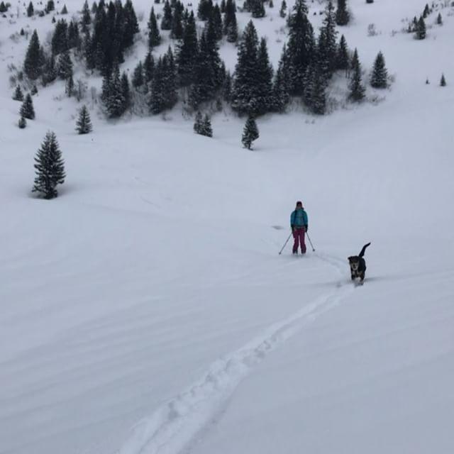 På tur med mina favoriter!!#brunni #engelberg #bergsresor #elevenate #dynafitsweden