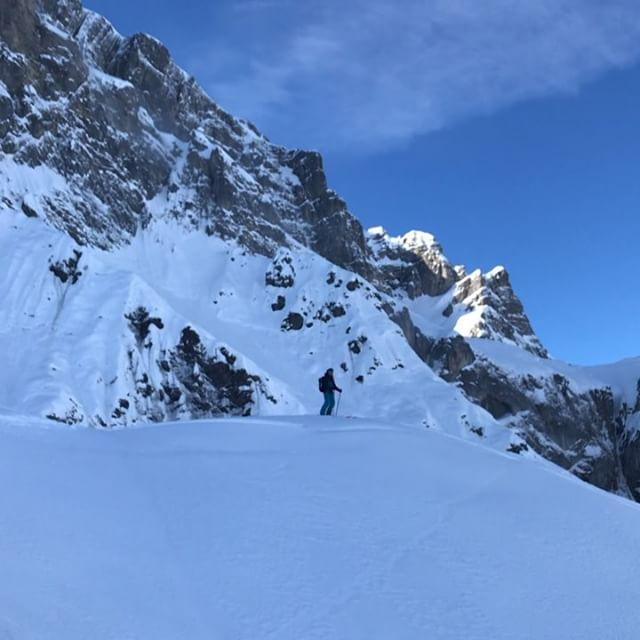 Stighudarna fortsätter att leverera! ⛷@petergrafstrom #alpelenhörnli #engelberg #bergsresor #elevenate #g3skis