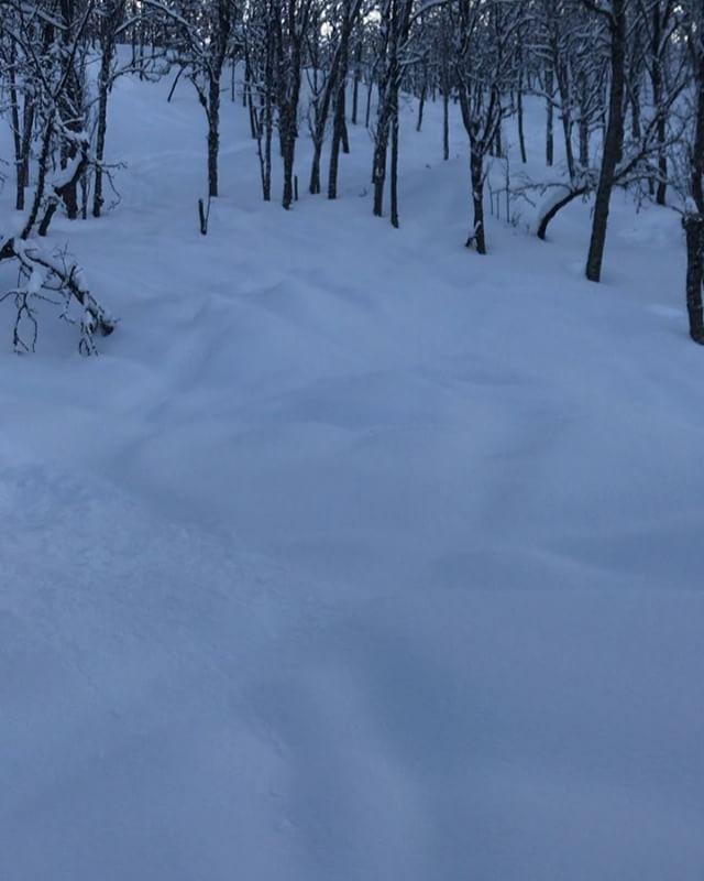Ett perfekt påskfirande!#narviksfjellet #narvik #bergsresor #elevenate #dynafitsweden #genuineguidegear #canon