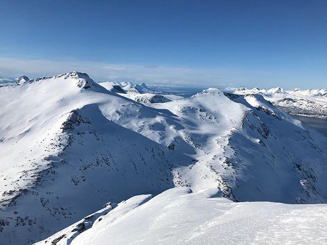 Ny dag ny topp!#nonstinden #narvik #bergsresor #elevenate #dynafitsweden #g3skis