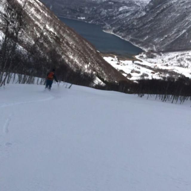 Blåsigt på fjället men kanon fint i skogen och fin utsikt från boendet i Narvik den här veckan!#skitouring #narvik #bergsresor #elevenate #g3skis #dynafitsweden #canon
