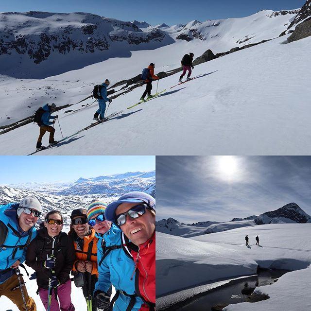 Grymt gäng på tur i Hunddalen!#elevenate #bergsresor #g3gear #dynafit #narvik #hunddalen